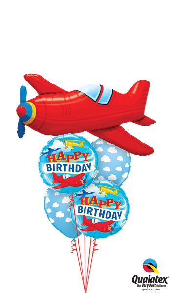 Picture of Birthday Boy Plane