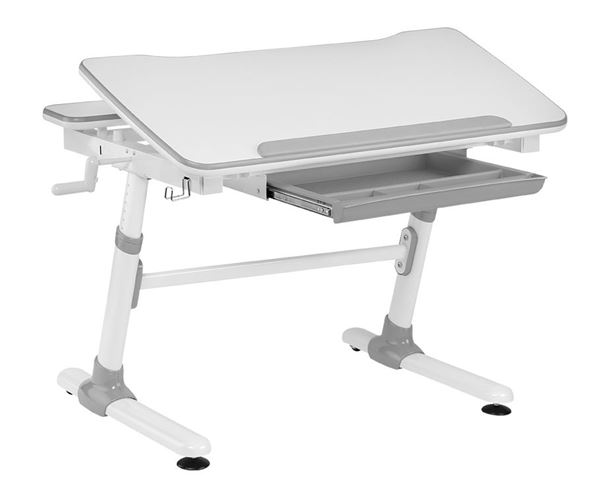 Picture of GIANT ERGONOMIC DESK