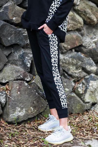 Picture of Gabriella Leopard Splice Jogger - Black | 3rd Story
